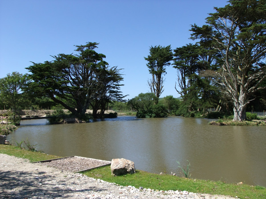Fir Tree Pond