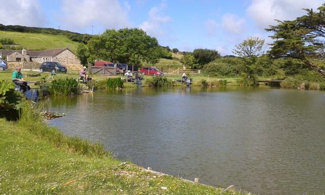 Fir Tree Pond 2